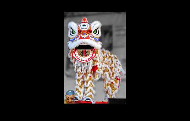 lion-dance-bkg